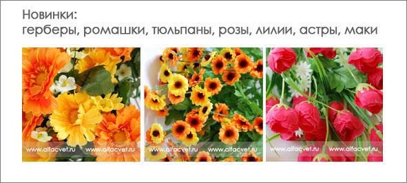 Купить цветы в горшках оренбург доставка цветов майами
